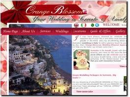 http://www.italy-weddingplanner.com website