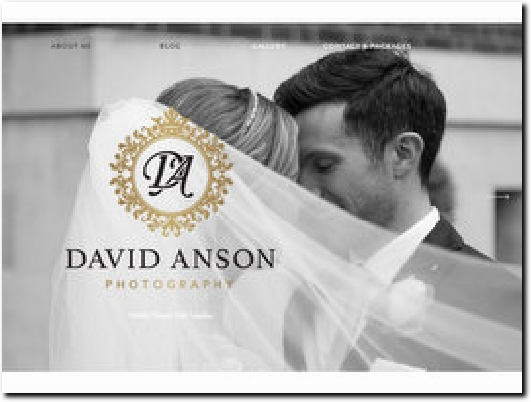http://davidansonphotography.com website