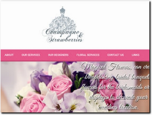 http://www.champagneandstrawberries.biz website