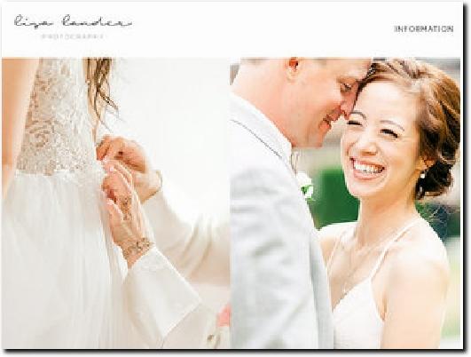 http://lisalander.com website